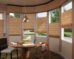 Vignette Roman Shades - Ft. Myers FL