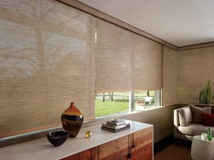 Operating Systems for Roller and Screen Shades